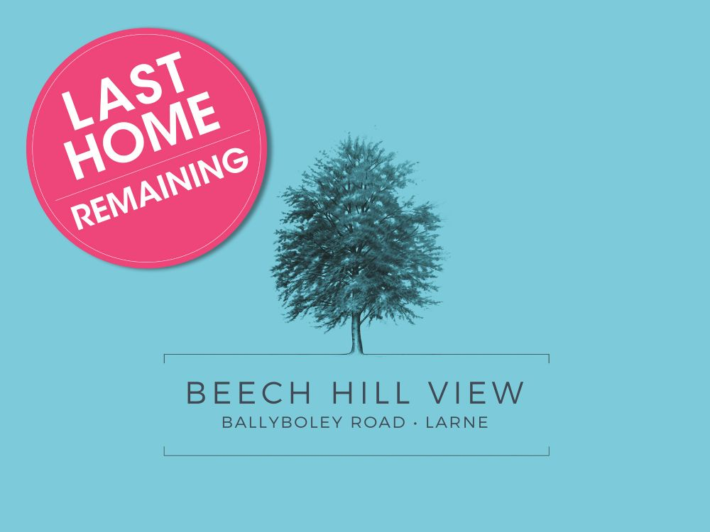 Beech Hill View